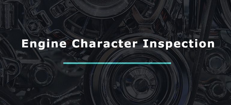 Engine Character Inspection