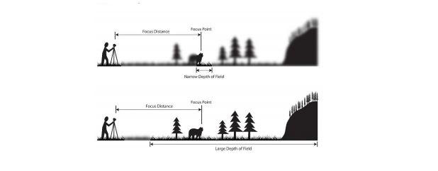 depth field