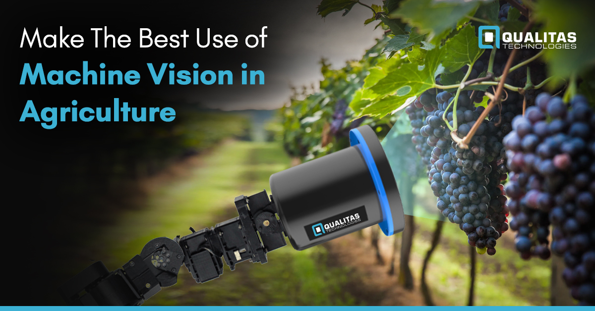 Make The Best Use of Machine Vision in Agriculture